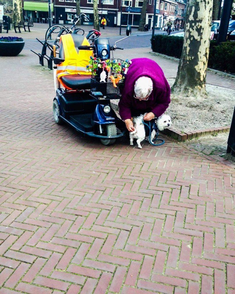 hondje, kontje vegen, scootmobiel, gele hesjes, geel hesje
